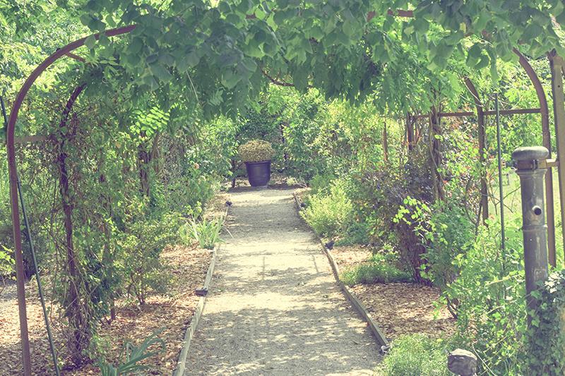jardin-thalasseo-chateau