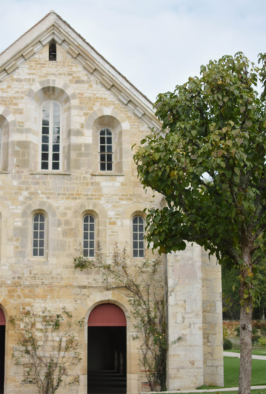visite-abbaye-de-fontenay
